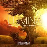 Project SAM - LUMINA