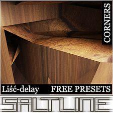 SaltLine-LiscDelay