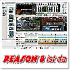 Reason-8